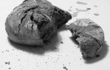 portada el pan y la paz
